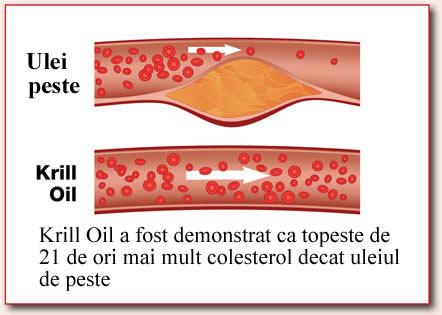 Colesterol rau si krill oil