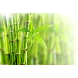 Belle&Bio Siliciu Organic 120 capsule (Extras Bambus Tabashir, Artroza, dureri articulare) Beneficii Siliciu Organic: are un efe
