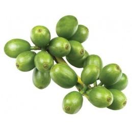 Boabe de Cafea Verde cu Svetol 800mg 60 Capsule