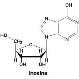 Pure Inosine 100 capsule