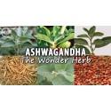 Ashwagandha 120 pastile