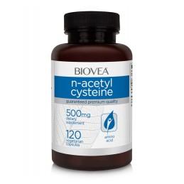N-Acetil Cisteina 500mg 120 Capsule