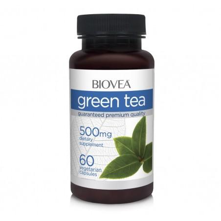 Ceai verde (Green Tea) 500mg 60 Capsule