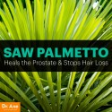 Saw Palmetto 700 mg 100 capsule