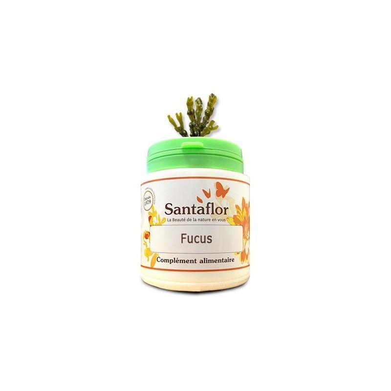 Fucus 240 capsule, Fucus (Fucus vesiculosus)