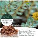 Rhodiola Rosea Premium Extract 120 capsule