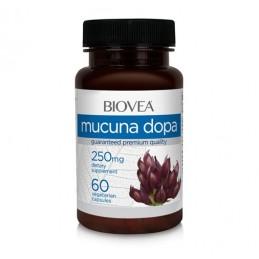 Mucuna Pruriens Dopa, 250mg, 60 capsule