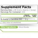 Acetyl L-Carnitine (Acetil L-Carnitina) 216 grame