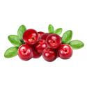 ActiCran 60 Capsule, Extract afine si merisor, hibiscus, infectii urinare