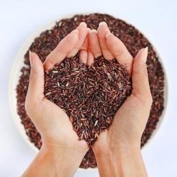 Cholesteril Forte, Drojdie orez rosu, Monokolin 10 mg, 30 Capsule
