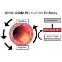 L-Arginine  L-Citrulline - 60 Capsule, Oxid Nitric, pret, beneficii, pareri, prospect