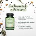 Resveratrol + Nicotinamid 60 Capsule, Trans-Resveratrol 500 mg, pret, prospect
