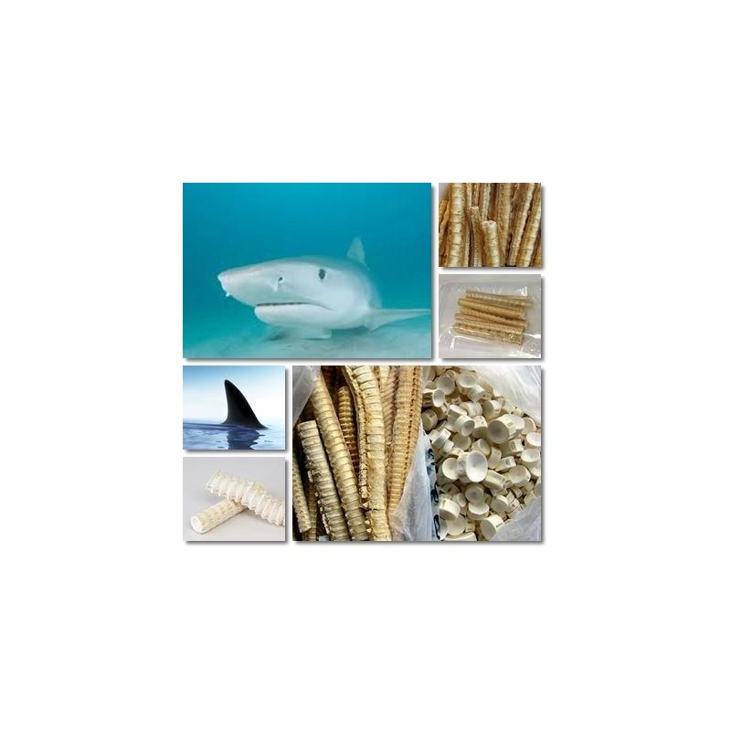 tratamentul articulațiilor ficatului de rechin)