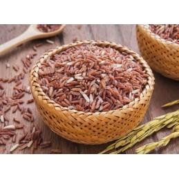 Cholesteril-Drojdie orez rosu