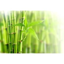 OstroVit Silica Bamboo VEGE 90 vcaps
