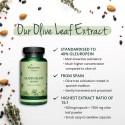 Olive Leaf Extract (40% Oleuropein) Frunze de maslin Bio 90 Capsule