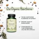 Organic Hawthorn (Weisdorm - Paducel) 60 Capsule