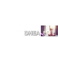 DHEA, 7-KETO DHEA, Gama de produse cu DHEA