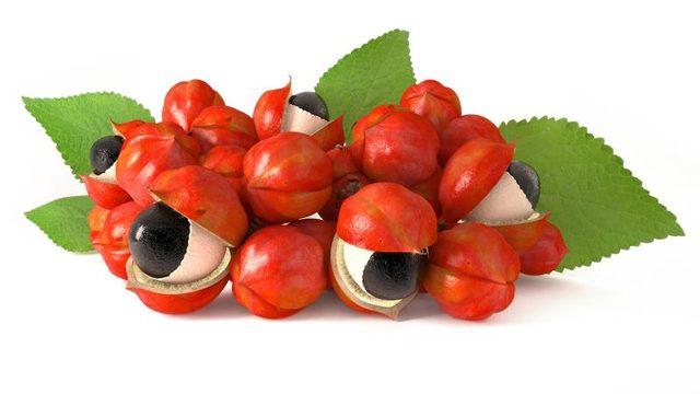 Guarana fruct